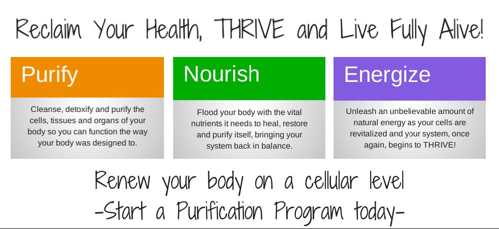 reclaim your health detox program